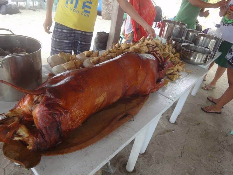 roasted pig, among others
