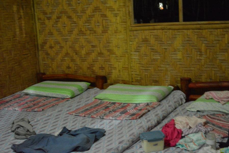 big bamboo beds
