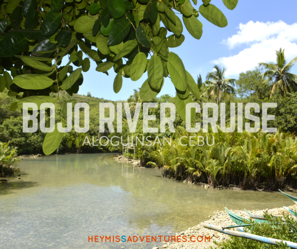 If you're from Cebu and can't afford to go to El Nido just yet, the Bojo River Cruise is a good enough alternative. Check out our adventure! >> heymissadventures.com