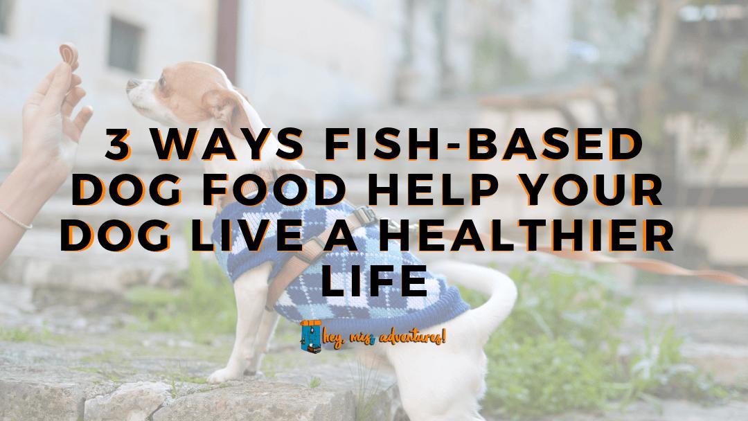 3 Ways Fish-Based Dog Food Help Your Dog Live a Healthier Life