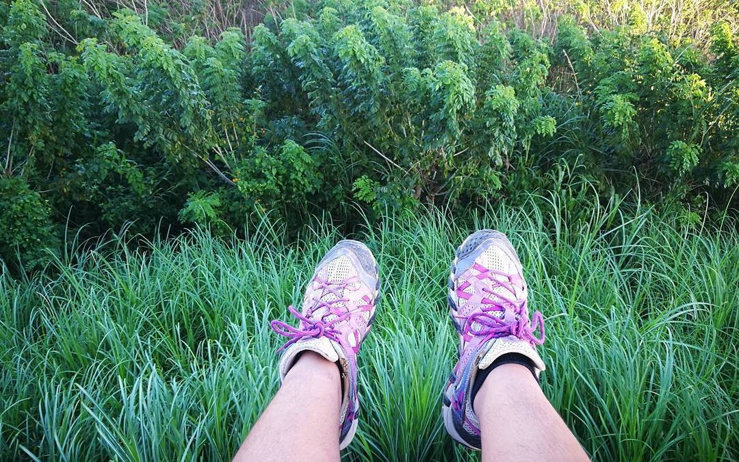 Gear Review: Merrell Waterpro Maipo Hiking Shoes