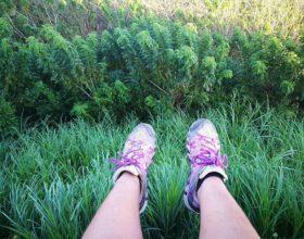 Gear Review: Merrell Waterpro Maipo Hiking Shoes