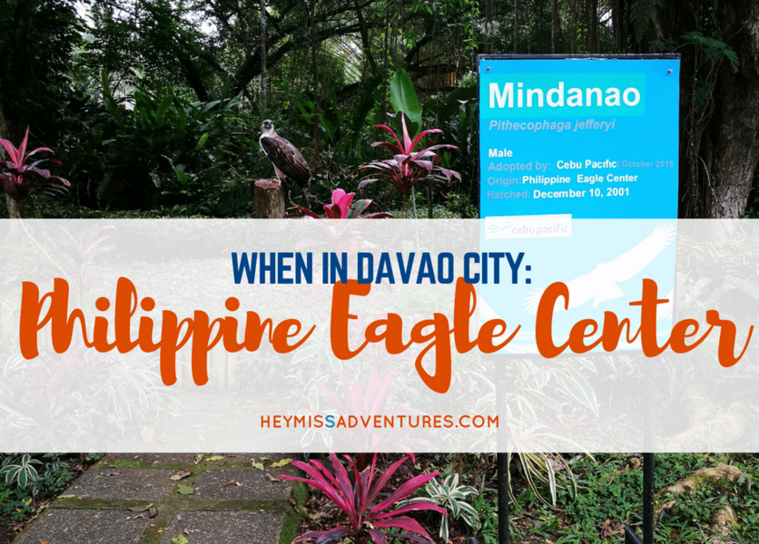 When In Davao City: The Philippine Eagle Center