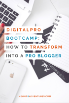 How to Transform Yourself into a Professional Blogger   Hey, Miss Adventures!