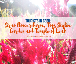 Tourists in Cebu: Sirao Flower Farm, Tops Skyline Garden and Temple of Leah