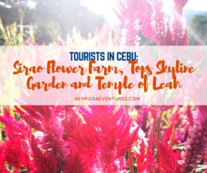 Tourists in Cebu: Sirao Flower Farm, Tops Skyline Garden and Temple of Leah