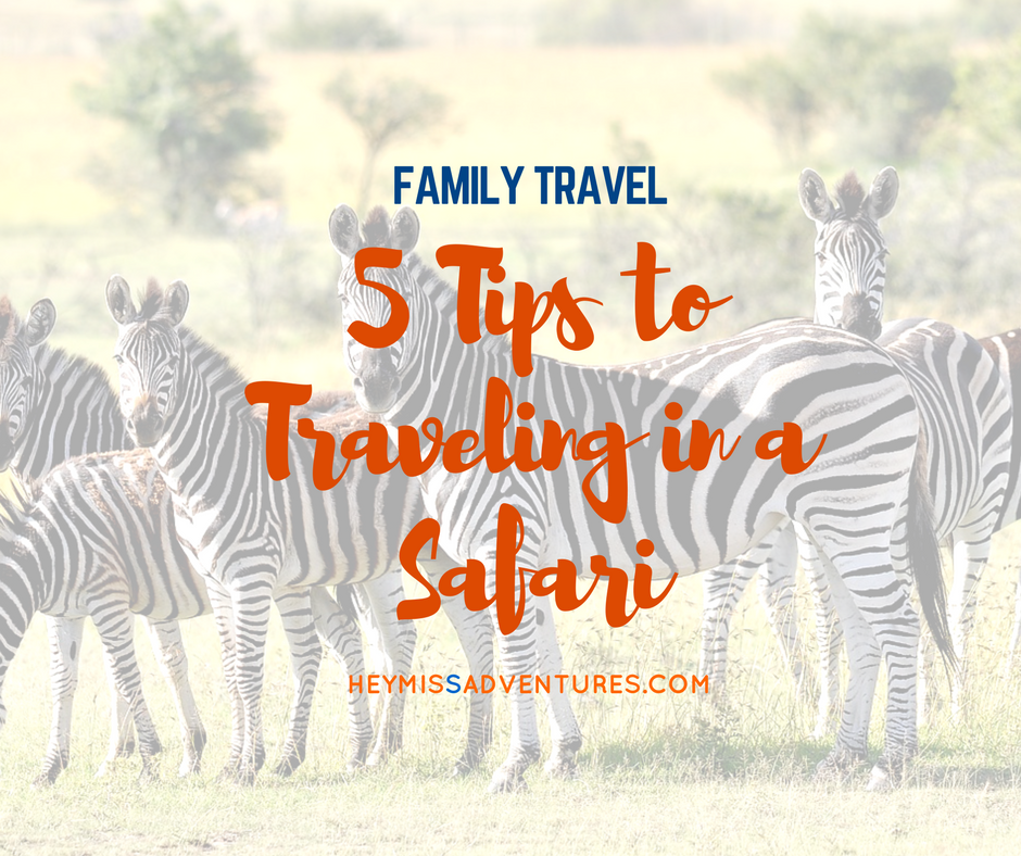 5 Tips to Traveling in a Safari